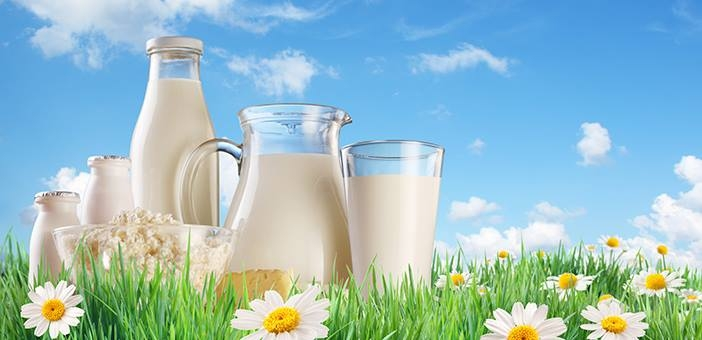 Công ty TNHH Thành Hoàng Long - Địa chỉ mua sữa đáng tin cậy